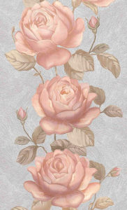 Роза жемчужная